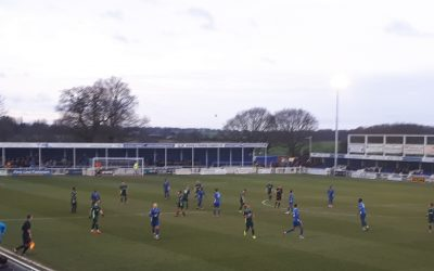 Blues fall to home defeat against Chippenham