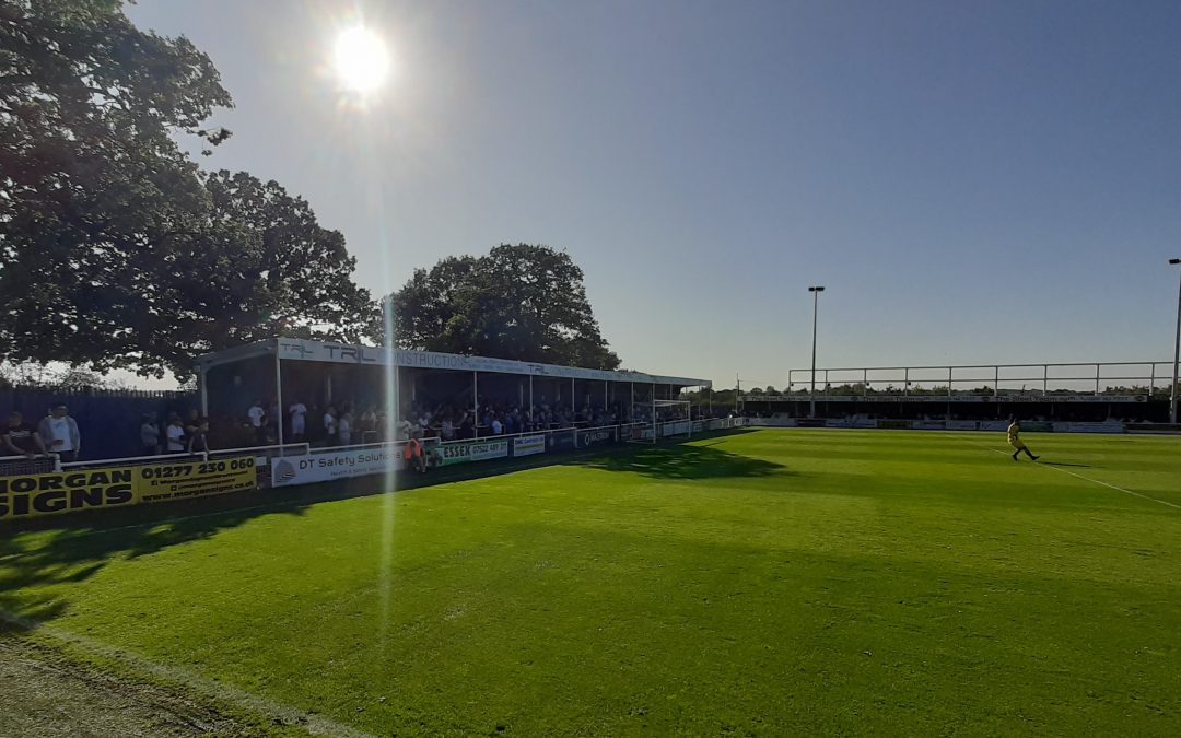 Terras return to Billericay